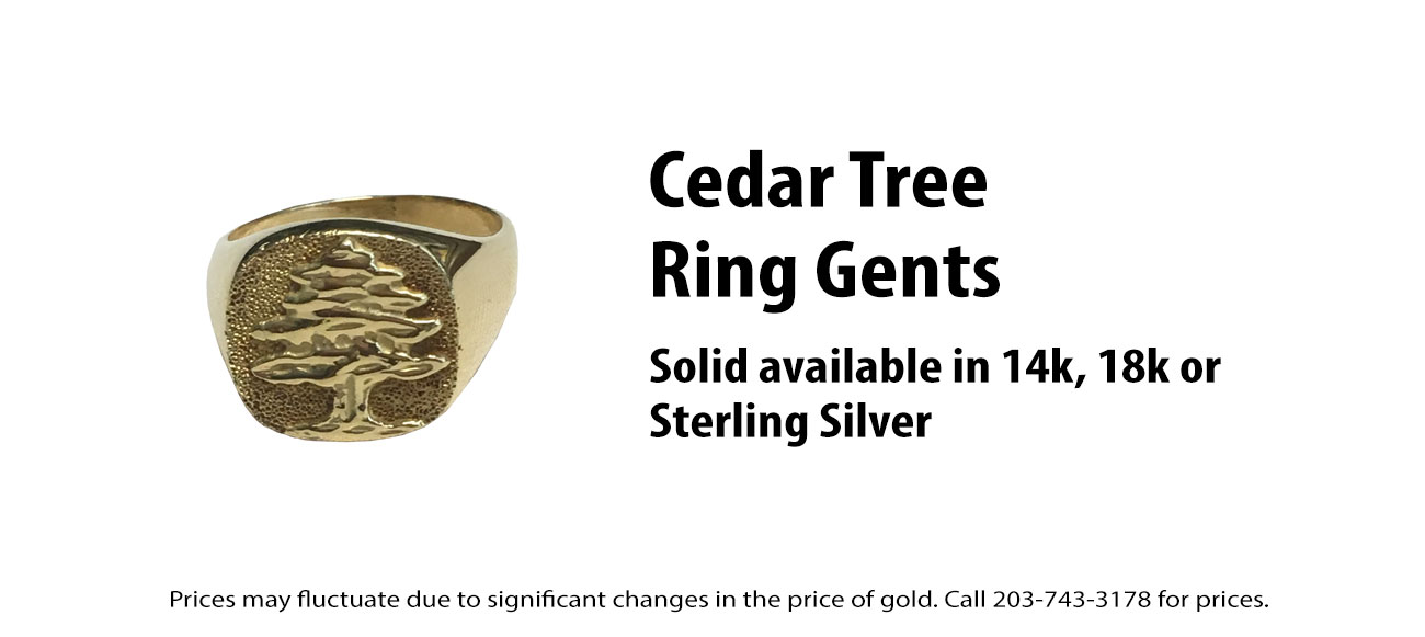 Cedar Tree Ring Men's